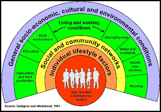 Social determinants of health - Dahlgren and Whitehead 1991
